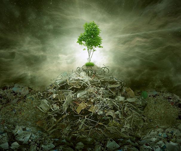 rda-sydney-complex-world-of-waste-manage