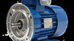 Low Voltage Metric IEC Motors
