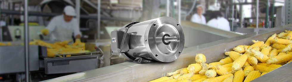 electric motors for food and beverage processing equipment