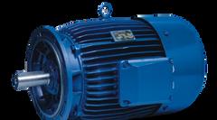 Marine Duty Metric IEC Motors