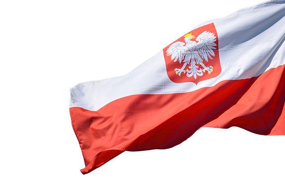 Elektrim Motors Made in Poland