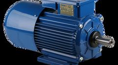 IEC Metric Brake Motors