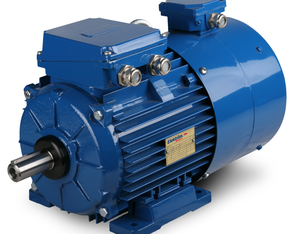 IEC Metric Motors with Foreign Cooling