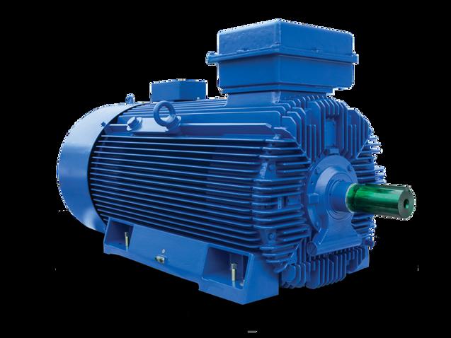 Large Frame IEC Low Voltage Motors