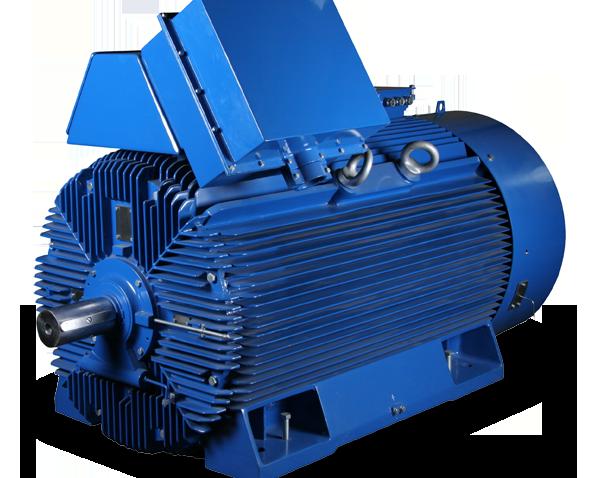 Medium Voltage IEC Motors