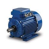 Metric IEC Motors
