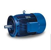 Metric IEC Marine Duty Motors