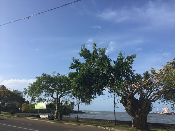 Apia, Samoa harbour