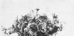 paolo-petro-fiori-home