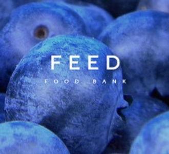 feed square.jpg