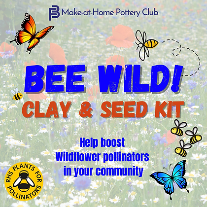 Bee Wild! Clay & Seed Kit