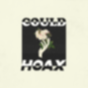 HOAX-Could-Artwork.PNG