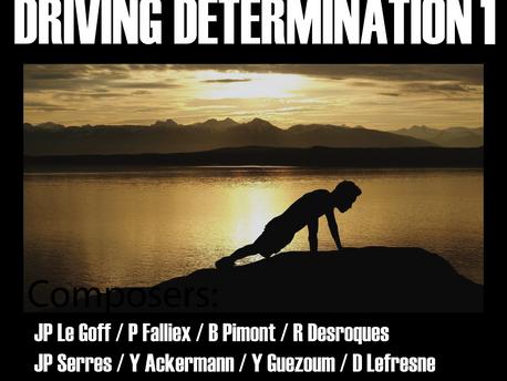 DRIVING DETERMINATION 1