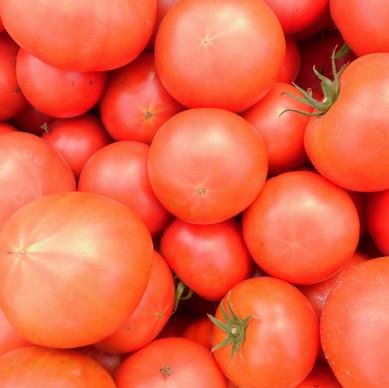 どうしてもらえるの?ときどき社員に支給されるトマトの謎を追いました