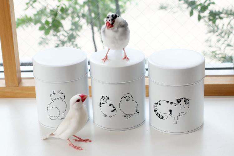 文鳥缶と一緒にクイちゃんとセコちゃん2ショット