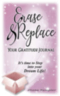 Erase and Replace Journal 8x11-1.jpg