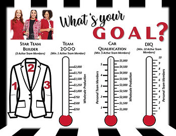 Consultant Goal Tracking.jpg