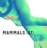 MAMMALS (AT)