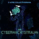 Ein Cybernachtstraum