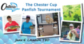 OWA Chester Cup 2020 banner.jpg