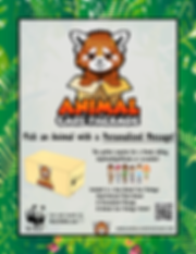 ACP Flyer.png