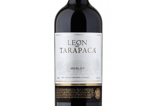 Leon de Tarapaca Merlot