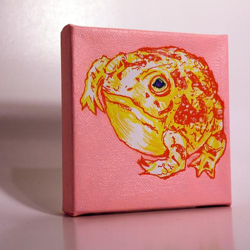 round froggie