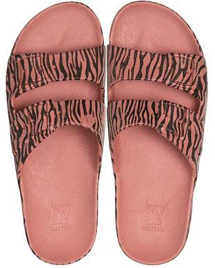 Cacatoes Zebra Bois de Rose