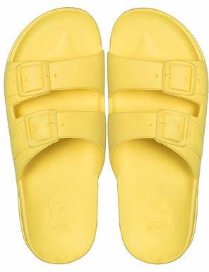Cacatoes Bahia Yellow Fluo