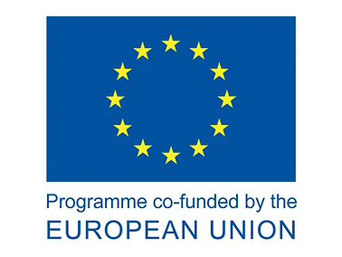 eu-funded-1024x931.png