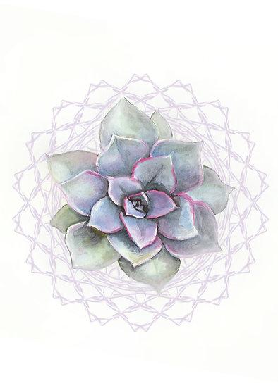 Succulent Mandala - Watercolor Print Set