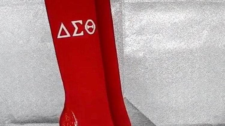 ΔΣΘ Red Genuine Patent Leather and Knit 4in Boots