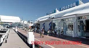 sydney aquarium boardwalk.jpg