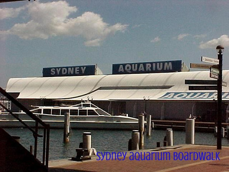 Sydney Aquarium Boardwalk 2.jpg