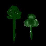 clover highest resolution copy.png
