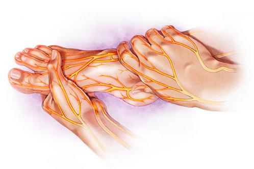 Neuropathy Essential Oils