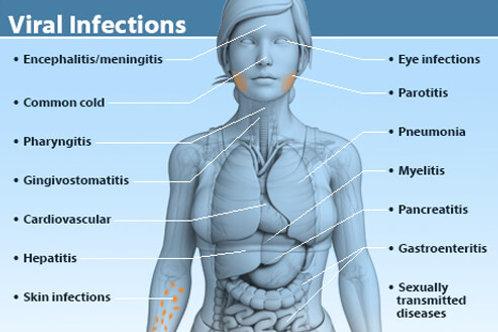 Viral Infection Oil Blend