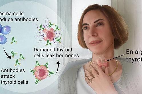 Hasimotos Disease Therapy Kit