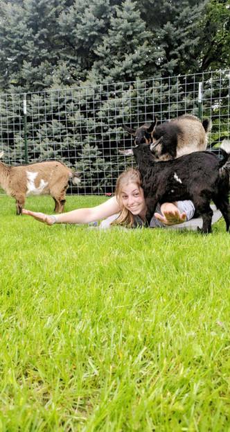 Goat Yoga with Phoebe, Daisy and Azalea