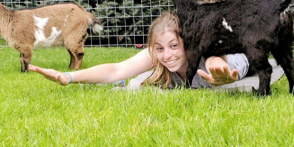 Goat Yoga with Tracey-6PM