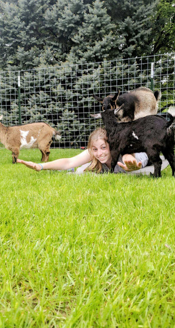 Goat Yoga with Phoebe, Daisy and Azalea