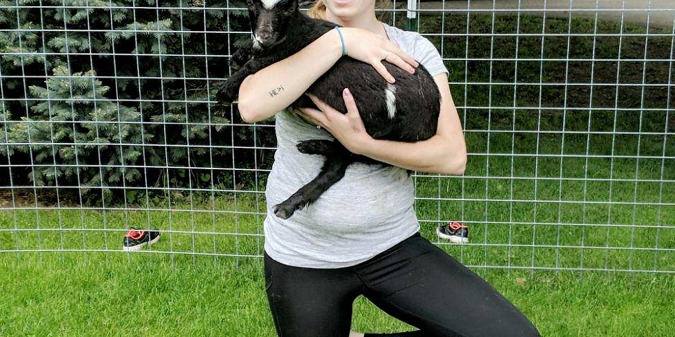 Goat Yoga with Tracy-6PM
