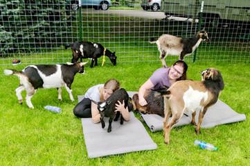 Love'n goat yoga