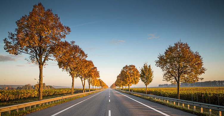 sunny road.jpg
