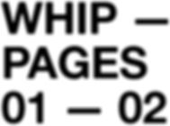WHIP PAGES.jpg