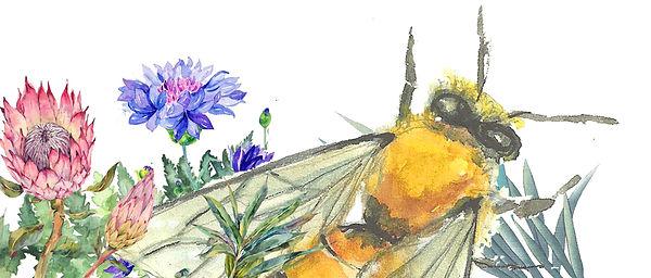 ecosophie-fleurs.jpg