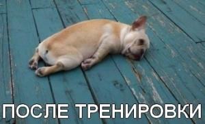 Давайте отдыхать!