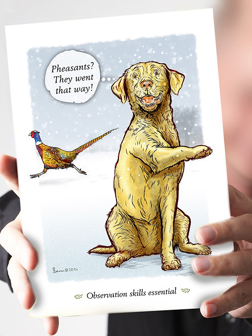 Ref 62 - Pheasants that way - Yellow Lab