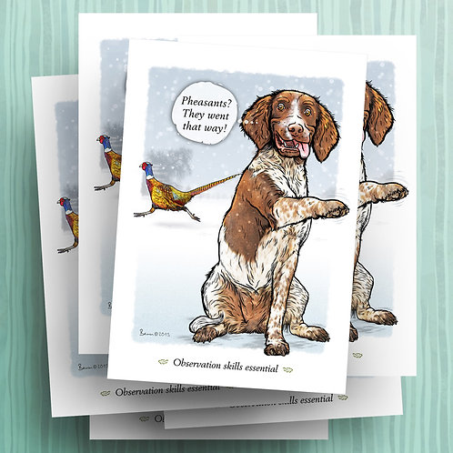 They went that way – L&W spaniel – 6 pack