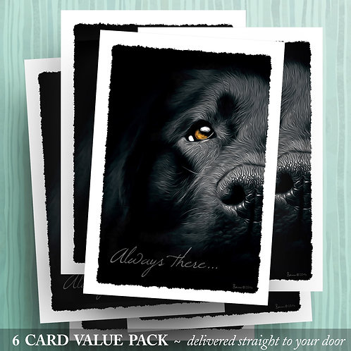 'Always there . . . ' - Black Lab - 6 pack